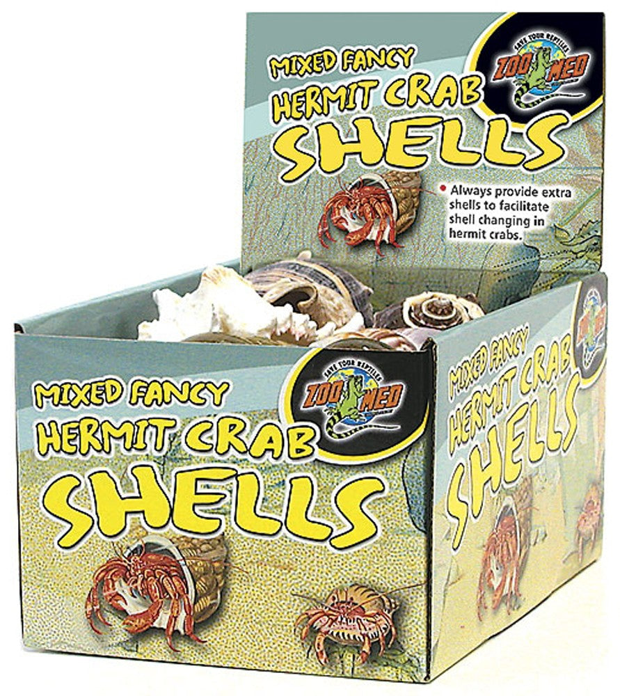 Bulk - Hermit Crab Shells (Nat