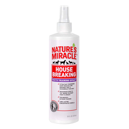 PTN TRNG Aid Go Here Spray 8oz