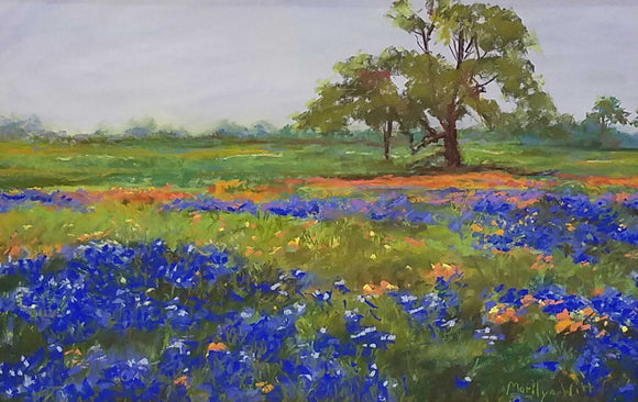 Bluebonnets & Indian Paintbrush Pastel Painting by Marilyn Witt