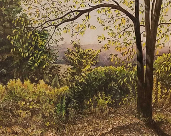 Copper Head Valley Colored Pencil Painting by Barry Powell
