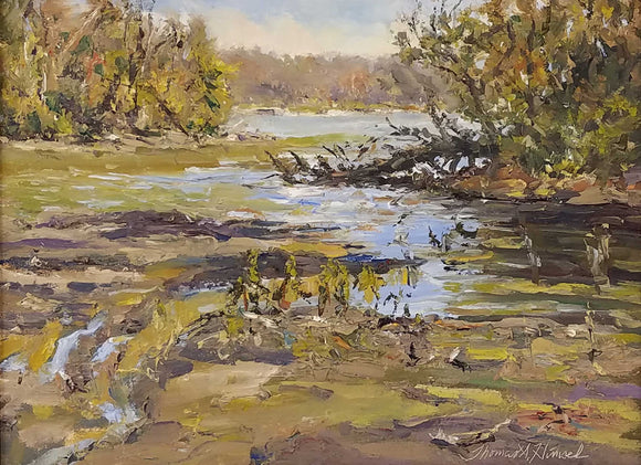 A Fredrick Vance Prize Winner 2019  This was painted Plein Air at Eagle Creek Park in 2018. Thomas added 1 coat of Gamblin oil painting ground for texture and permance to surface.   Painting: Eagle Creek Cove Artist: Thomas A. Himsel Medium: Oil - Plein Air  Size: 12