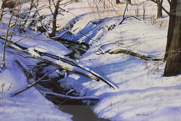 Long Shadows In A Winter Woods Watercolor by Stephen Edwards
