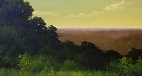Overlook In Brown County Oil Painting by Dan Woodson