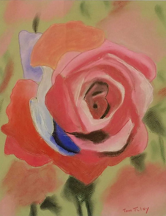 Rose Study VII Pastel Painting by Thomas Tuley