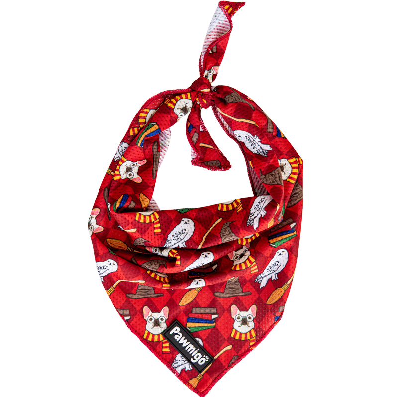 Pawmigo red burgundy Harry Potter Hogwarts dog cooling bandana with frenchies, owls, books, broom, and sorting hats