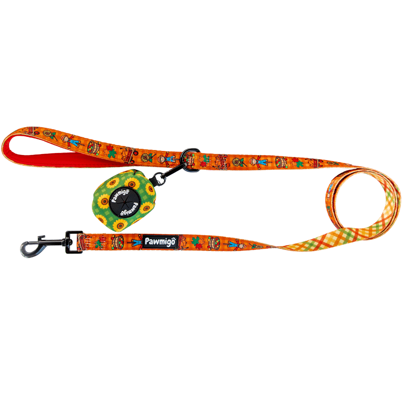Pawmigo fall pumpkin patch themed orange dog leash kit with green sunflower print poop bag holder