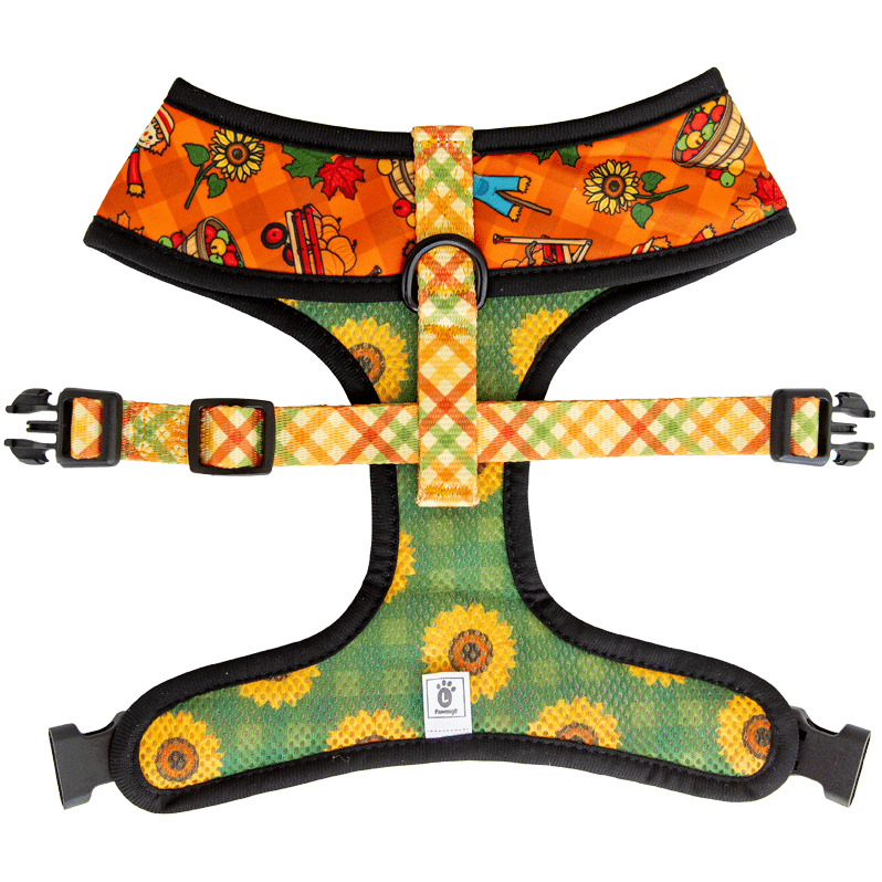 Pawmigo orange fall pumpkin patch themed reversible harness with green sunflower print and multicolor plaid strap