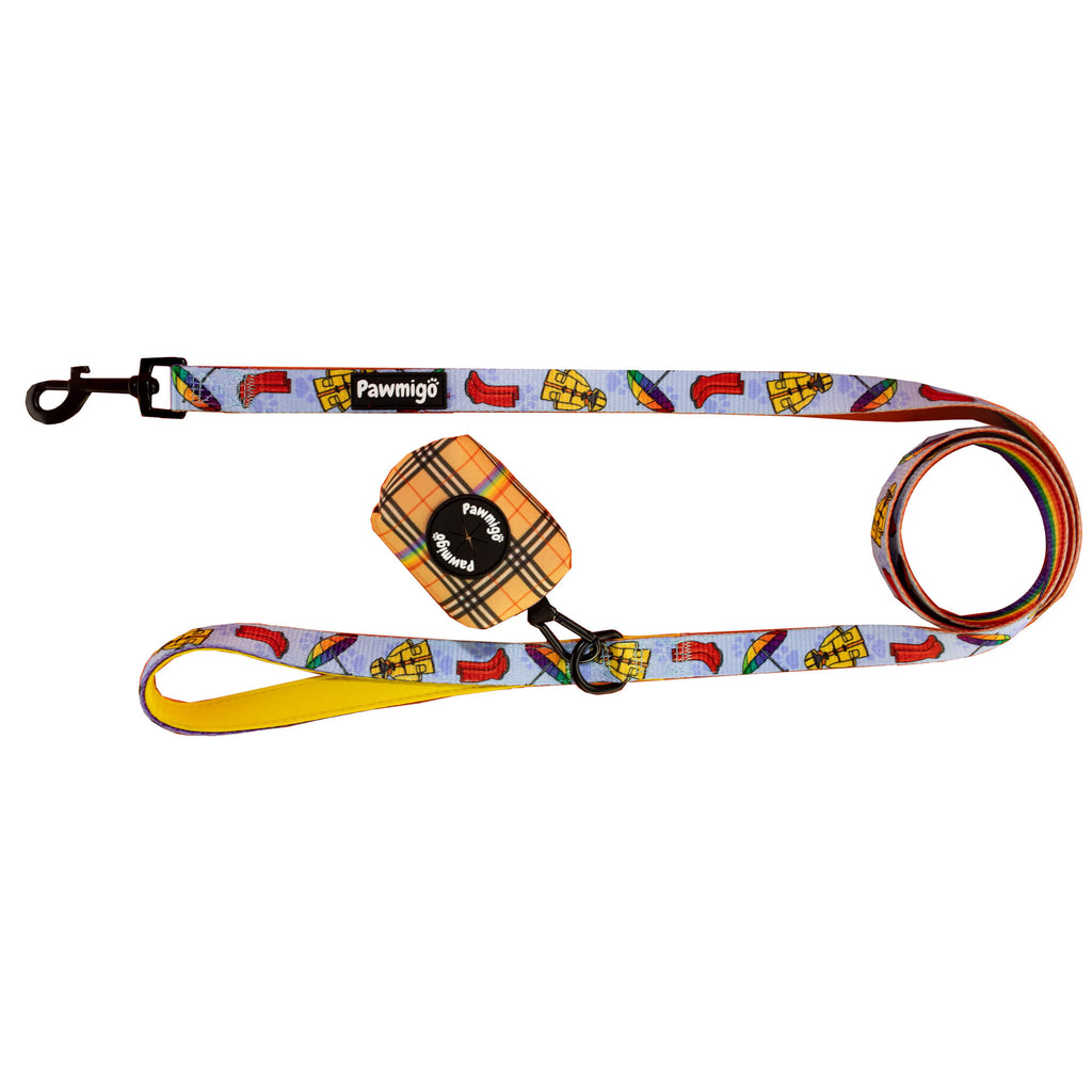 Rainbow Plaid Leash Kit by Pawmigo