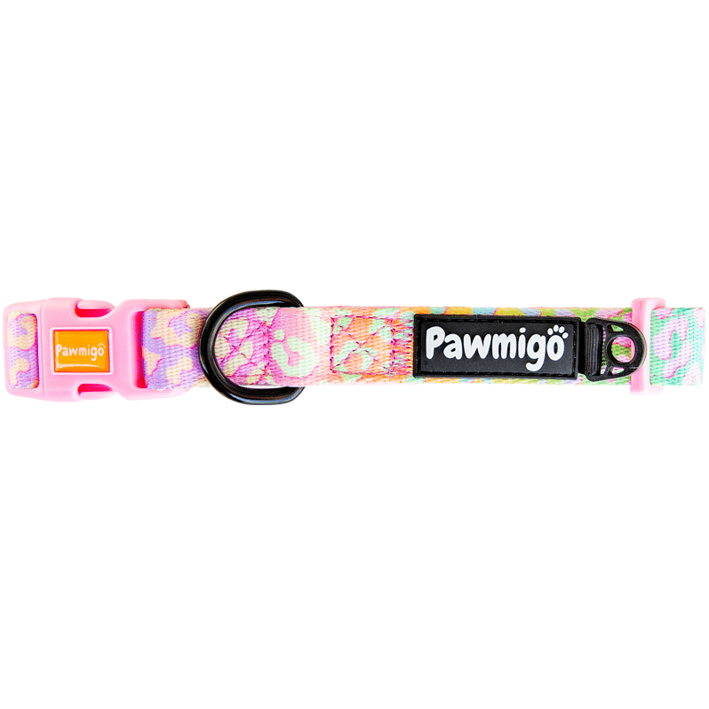 Pawmigo pastel rainbow leopard print dog collar with pink buckles