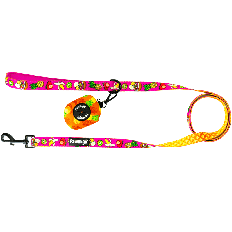 Acai bowl fruit themed dog leash kit with pineapple print poop bag carrier