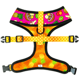 Acai bowl fruit themed reversible dog harness