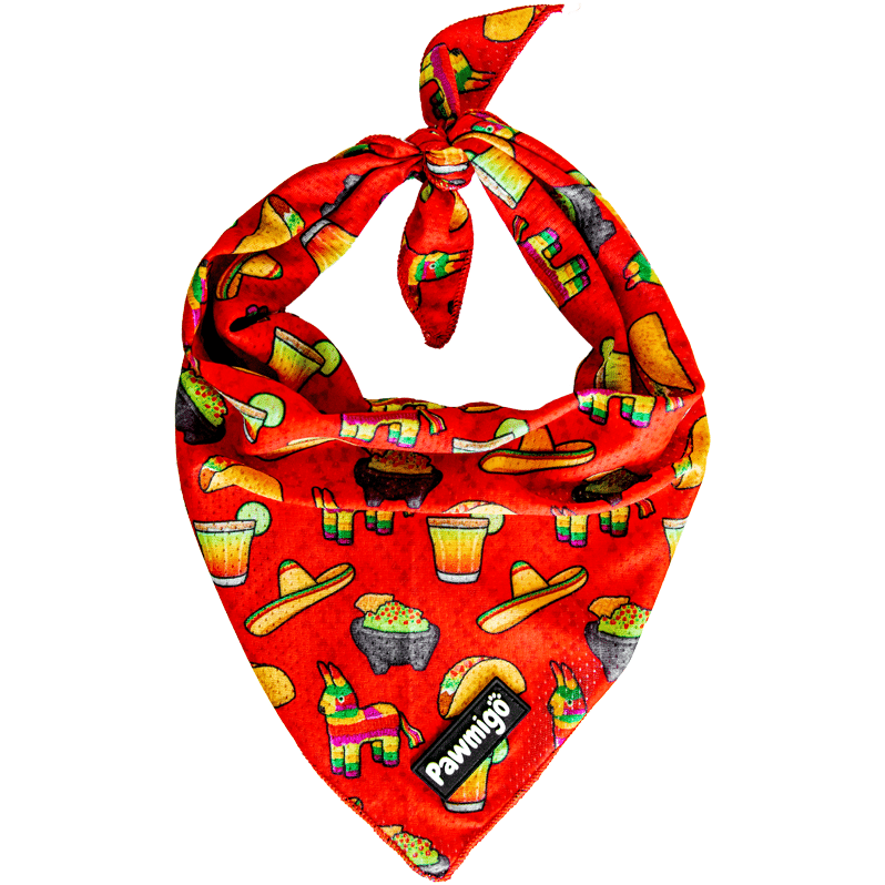 Pawmigo taco Tuesday fiesta Cinco de Mayo Mexican red cooling dog bandana with pinatas, margaritas, tacos, sombreros, and chips & guacamole
