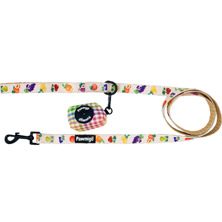 Frootie Patootie Leash Kit