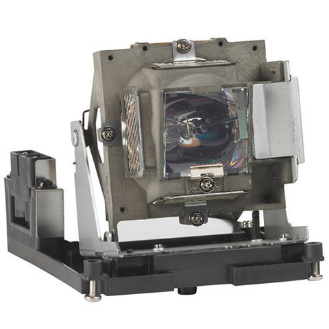 PRM-25 Projector Lamp