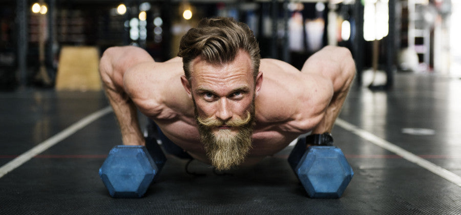 pompes musculation