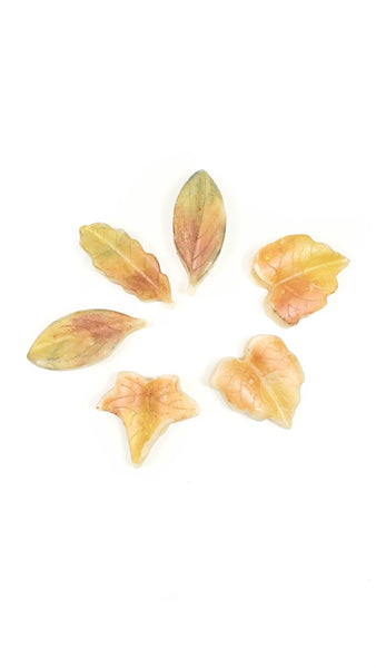 6 autumn leaves soy wax melts
