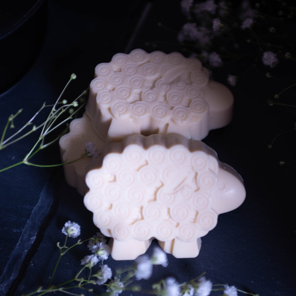 white lamb sheep soap with baby's breath on dark background