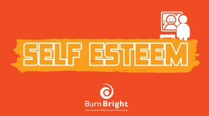 Self Esteem: Recognising Our Everyday Talents - Junior High School