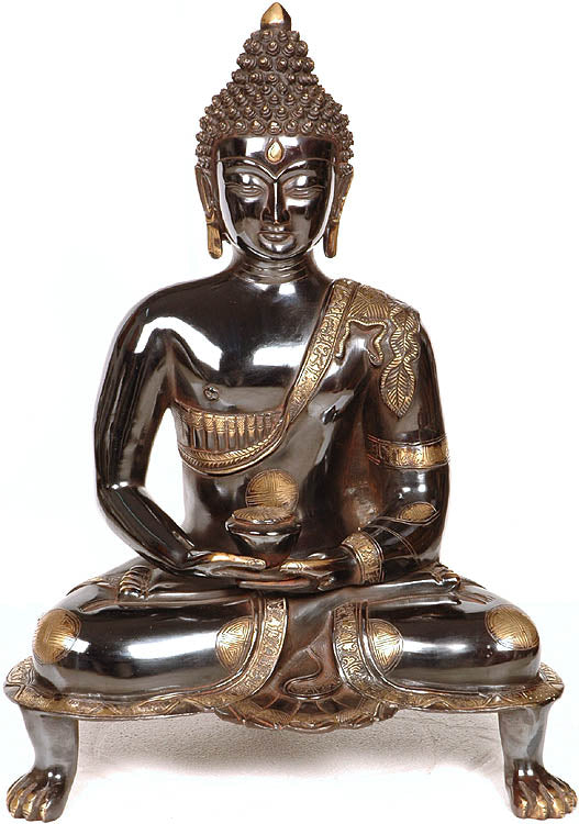 Black Buddha in Dhyana Mudra - (Robes Decorated with Scenes from the Life of Buddha)