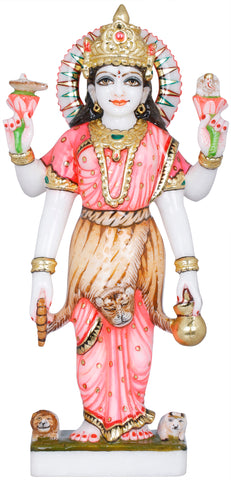 The Beauteous Devi Parvati, Tiger-skin Over Her Saree