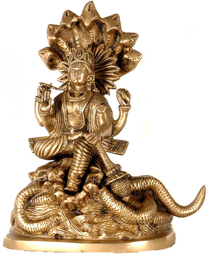 Lord Vishnu on Sheshnag