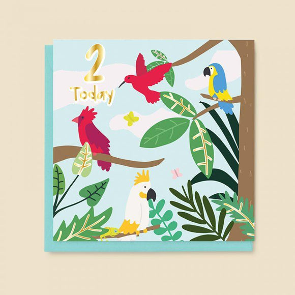 Age 2 - Tropical Birds