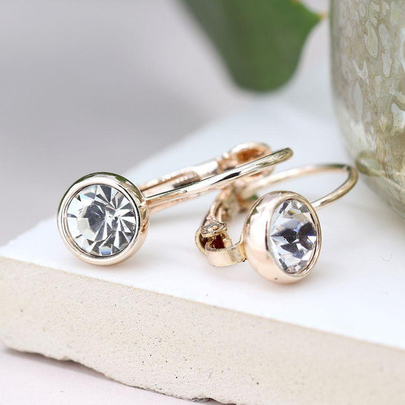 Rose Gold Crystal Set Earrings
