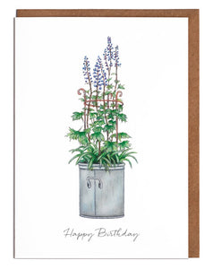 Delphiniums Birthday