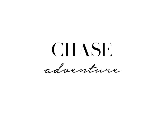 No.14 - Chase Adventure
