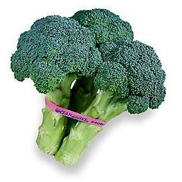 Broccoli-2 Bunches