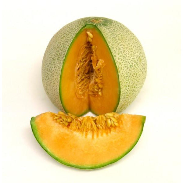 Cantaloupe Melon- Whole