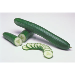 Cucumber Seedless Long- Per Piece