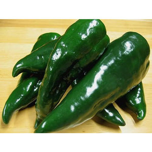 Peppers Poblano- 1lb