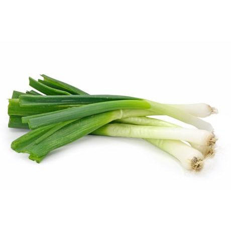 Scallions- Green Onions- 2 Bunches