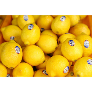 Lemons-Medium Sized-6 Pieces