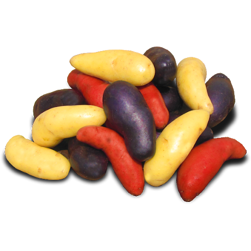 Potato-Fingerling Mixed Color- 2lbs.