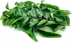 Curry Leaves 1pac