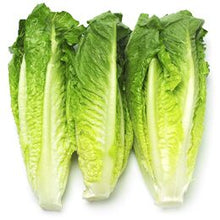 Load image into Gallery viewer, Lettuce Hearts