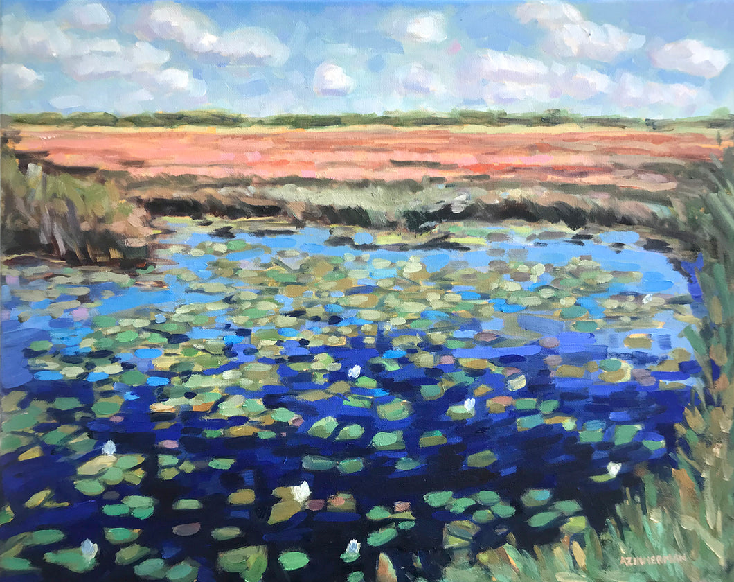 Morning Lilly Pads 20x16