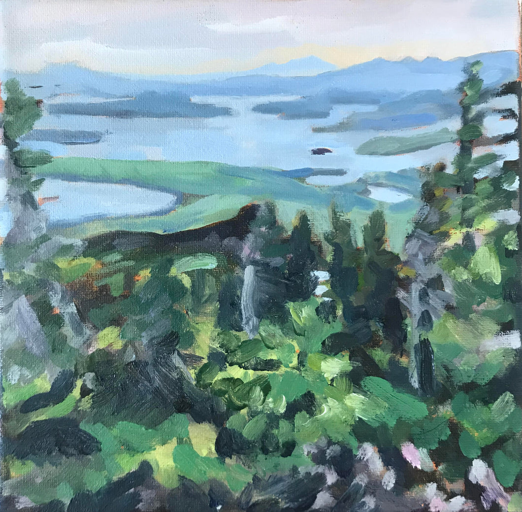 View from Big Moose Mountain, Moosehead Lake, ME 8x8