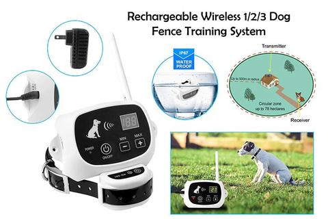 wireless dog fence - Horizoncare.in