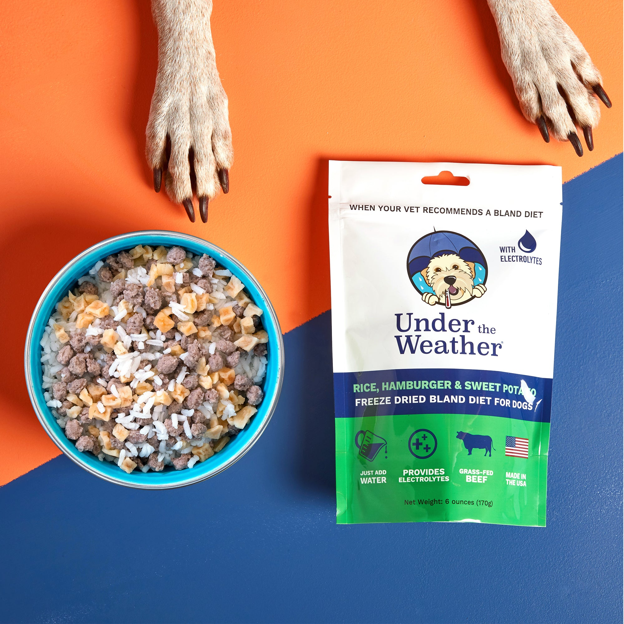 Hamburger, Rice, & Sweet Potato Bland Diet For Dogs