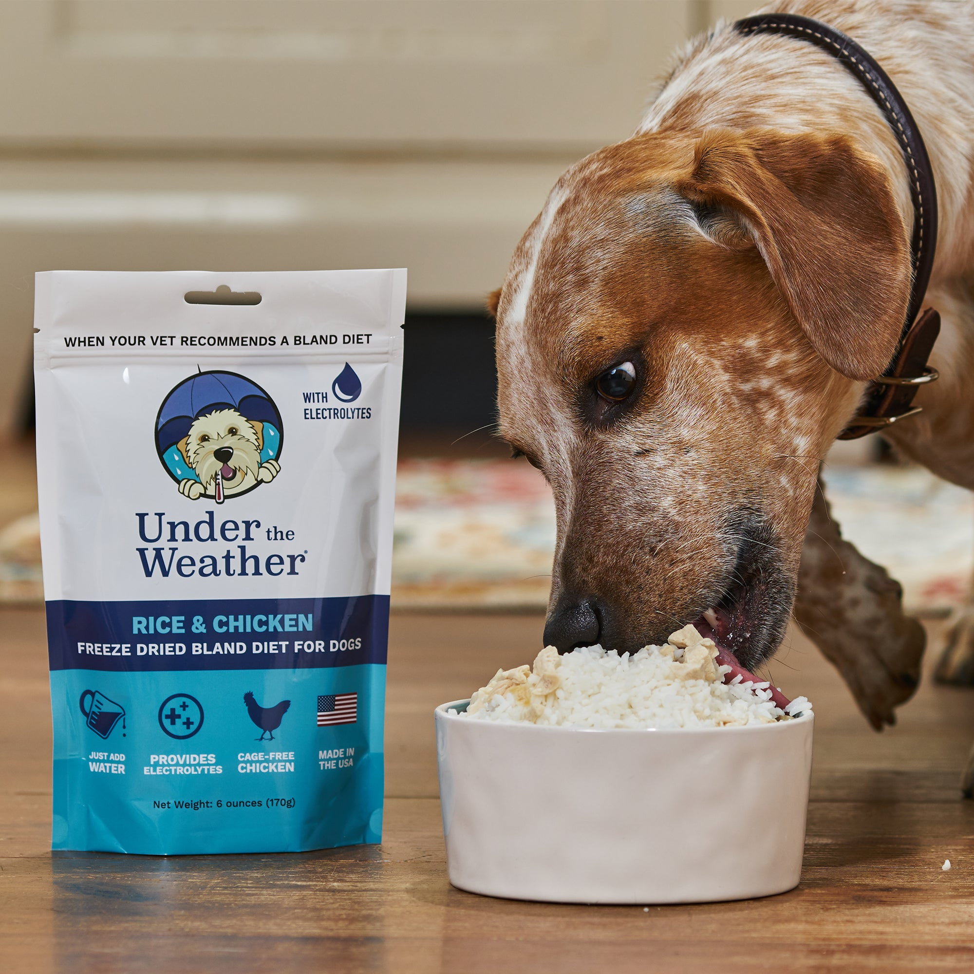 Chicken & Rice Bland Diet For Dogs - 4 Pack