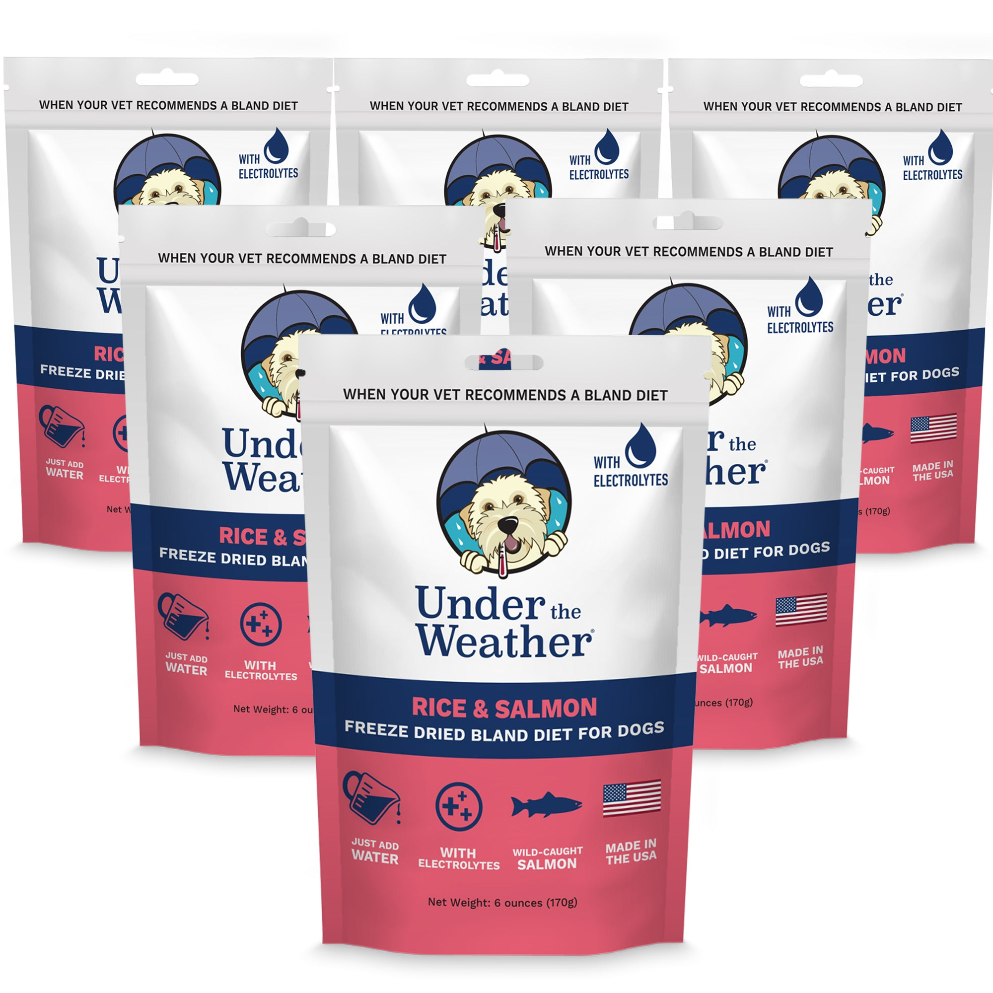 Salmon & Rice Bland Diet For Dogs - 6 pack