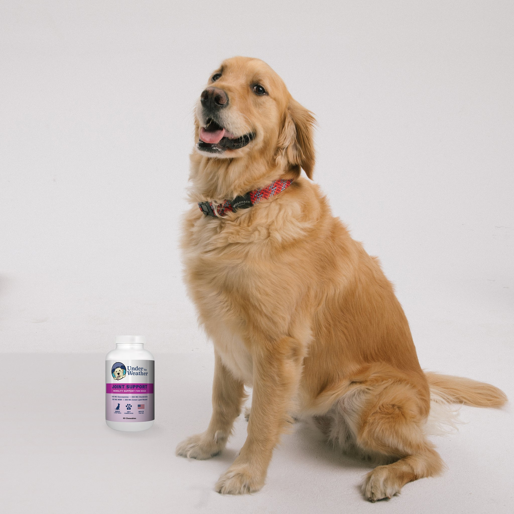 Joint Support Chewable Tablets For Dogs