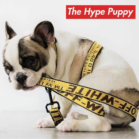 The Hype Puppy Off-White Collar