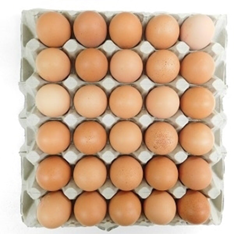 Free Range Medium Eggs - Tray 1 x 30 Eggs