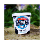 24 x 125ml Marshfield Scoops Dog Ice Cream