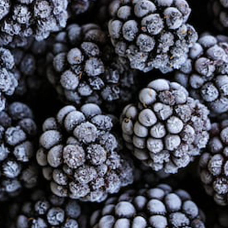 Blackberries - Frozen 450g