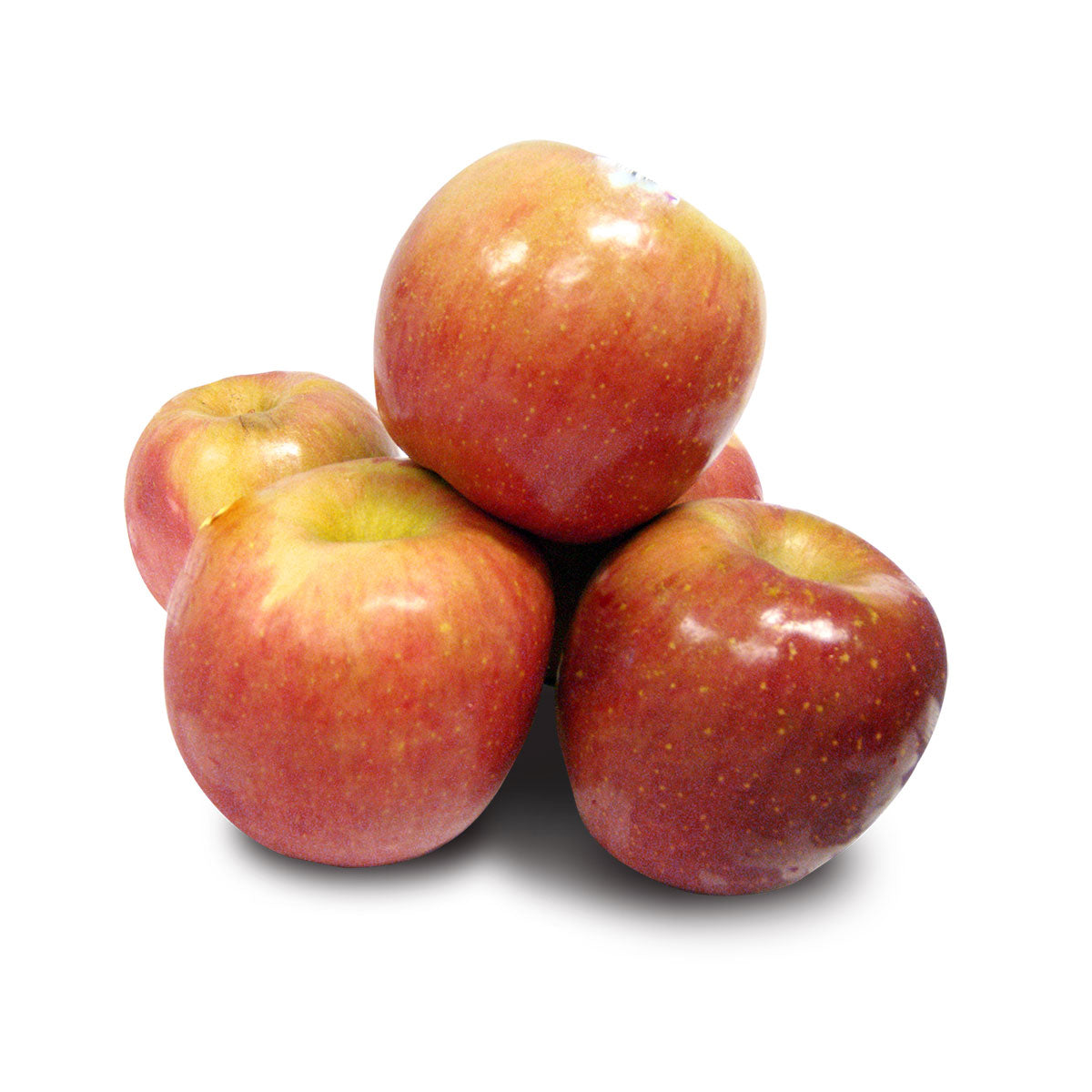 American FUJI APPLES LARGE